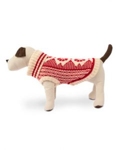 dog clothes | dogsdogsgo.com