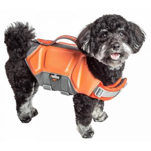 cute dog life jackets