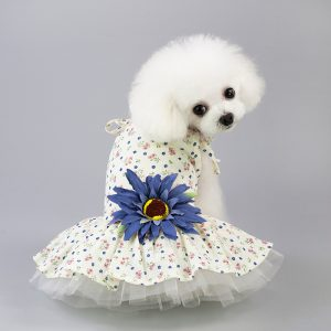 dog dress | dogsdogsgo.com
