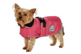dog coats | dogsdogsgo.com